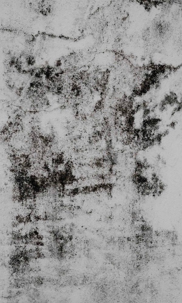mold-vertical